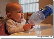 Bebé y su alimentación